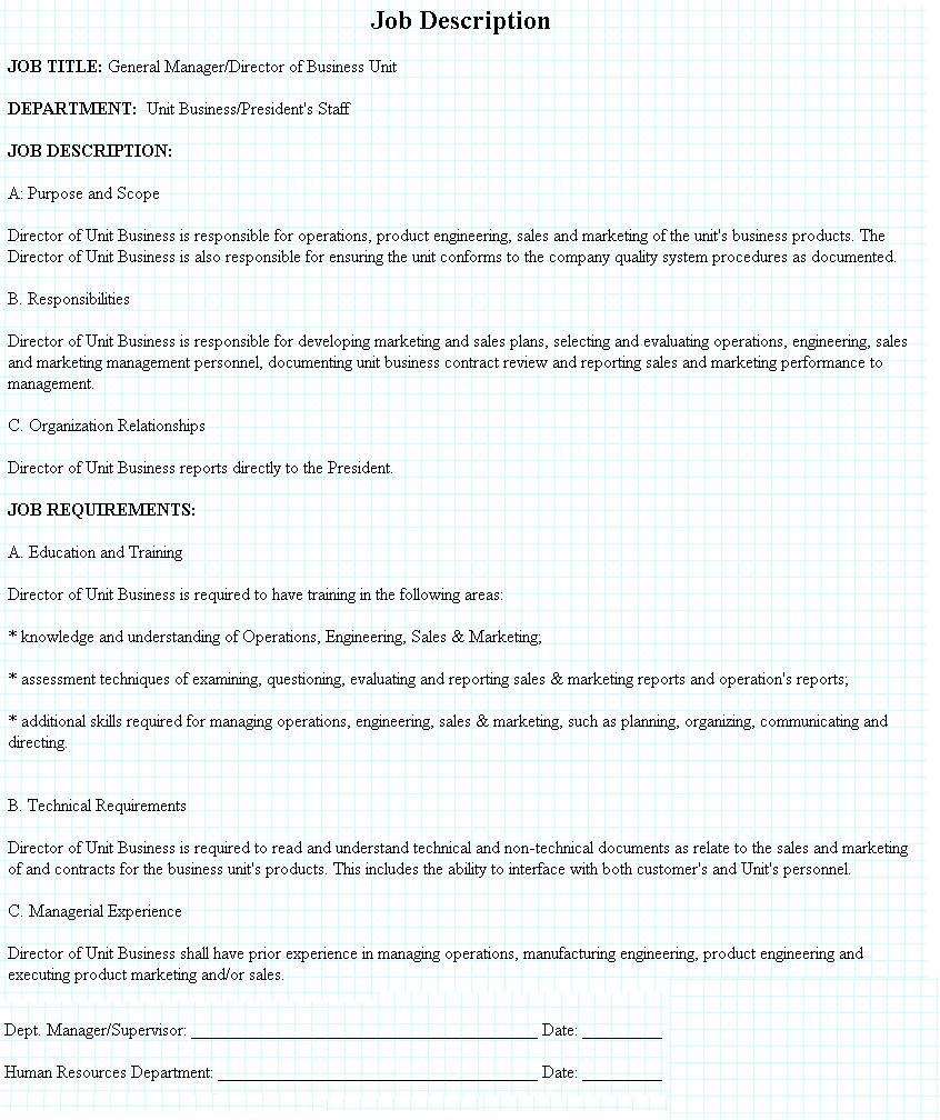 General Manager / Director of Business Unit Job Description